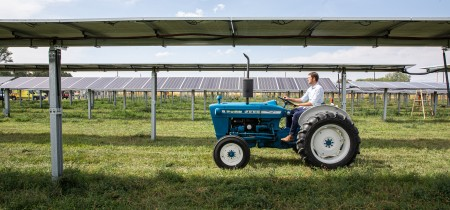 Agrivoltaics: Synergistic production of food and energy