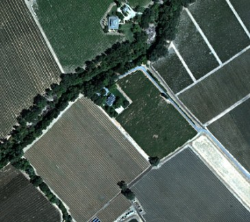 Aerial Imaging Improves Wine Grape Harvest