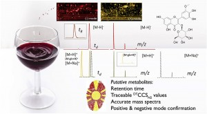 High-Precision Chemical Fingerprint Allows Unambiguous Identification of Wine