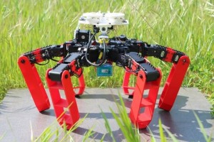 Antbot, the first walking robot that moves without GPS Credit Julien Dupeyroux, ISM CNRSAMU
