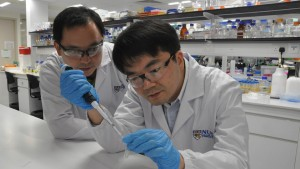 NUS scientists discovered that a combination of artemisinin, which is a potent anti-malarial drug, and aminolaevulinic acid, which is a photosensitiser, could kill colorectal cancer cells and suppress tumour growth more effectively than administering arte