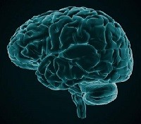 Imaging Technique Helps Traumatic Brain Injury Patients
