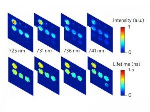 Bioimaging Technique Tracks Multiple In Vivo Interactions in Billionths of a Second