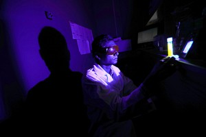 Dr Ajith Karunarathne examined toxic oxygen generation by retinal during blue light exposure