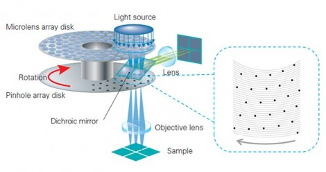 schemes of optical system of spinning disk confocal microscope