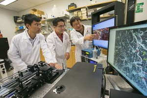 Professor Yingtian Pan, right, and his student Jiang You, left, and lab associate Ki Park, developed a quantitative imaging technique that shows how cocaine disrupts brain blood flow