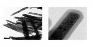 Transmission electron microscopy images of the nano-contrast-agents developed at the PSG College of Technology in India