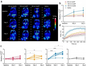 The images show PET scans of a mouse with a large tumor by the white arrow The tumor is treated with nanoparticles, which are injected directly into the tumor and are then flashed with near infrared laser light The laser light heats the nanoparticles, thu