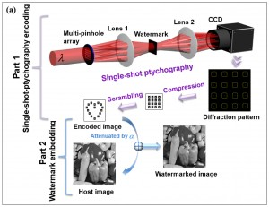 Schematic setups for optical watermarking based on single-shot-ptychography encoding