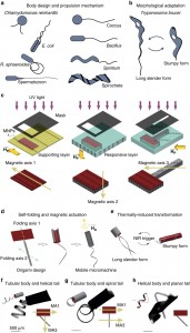 Remote-Controlled Microrobots for Medical Operations