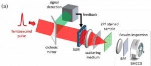 Noninvasive focusing through scattering samples