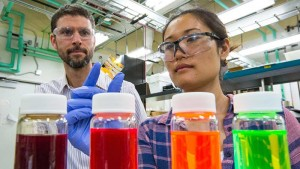 NREL scientists Joey Luther and Erin Sanehira are part of a team that has helped NREL set an efficiency record of 134 for a quantum dot solar cell
