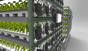 Vertical farming with OLED lighting system