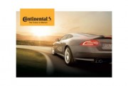 Continental and machine vision