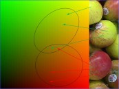Color space left with representative ellipses showing the area of generalization of colors learned from red and green apples