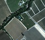 Visible color image of Napa Valley vineyards derived from Headwall Photonics VNIR E-series hyperspectral camera system