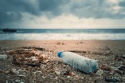 plastic bottle by the ocean